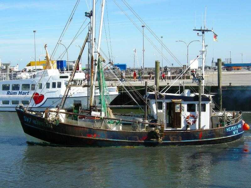 Ein Kutter im Hafen beim Auslaufen.
